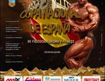 copa2011